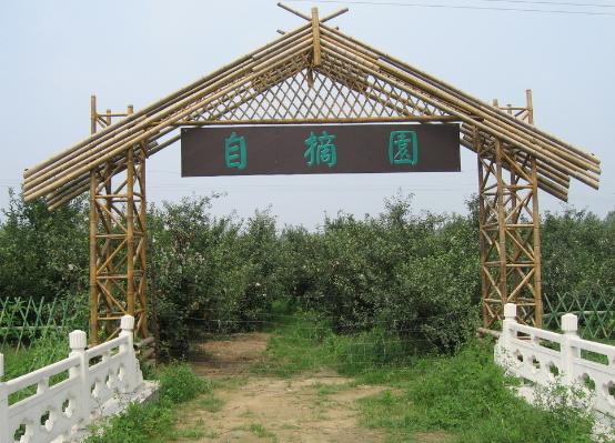 小型农业生态园设计_农业 生物多样性 生态系统服务_小型农业生态园设计